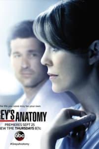 Greys Anatomy - Season 11 | Watch Movies Online