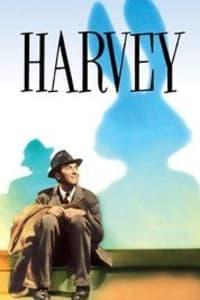 Harvey   Bmovies