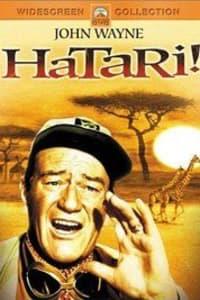 Hatari! | Bmovies
