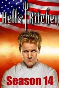 Hells Kitchen US - Season 14 | Bmovies