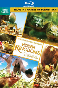 Hidden Kingdoms - Season 1 | Bmovies