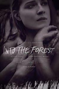 Into the Forest   Bmovies