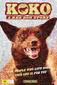 Koko: A Red Dog Story | Bmovies