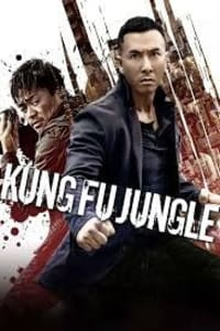 Kung Fu Jungle | Bmovies