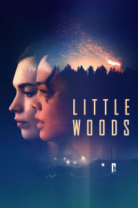 Little Woods | Bmovies