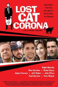 Lost Cat Corona | Bmovies
