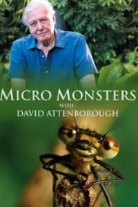 Micro Monsters with David Attenborough - Season 01 | Bmovies