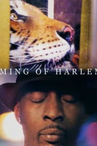 Ming of Harlem: Twenty One Storeys in the Air   Bmovies
