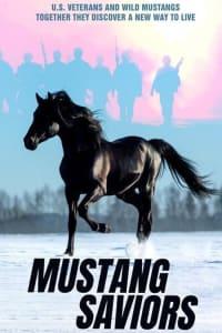 Mustang Saviors | Bmovies