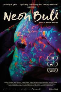 Neon Bull | Bmovies