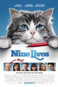 Nine Lives | Bmovies