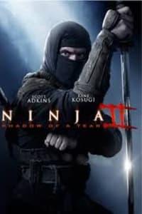 Ninja: Shadow Of A Tear | Bmovies