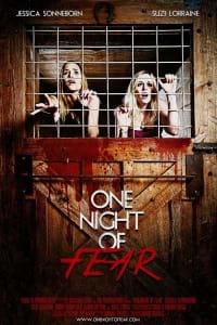 One Night Of Fear   Bmovies