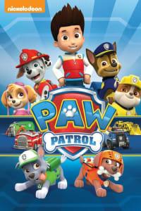 Paw Patrol - Season 4 | Bmovies