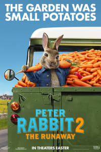Peter Rabbit 2 | Watch Movies Online