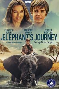Phoenix Wilder and the Great Elephant Adventure | Bmovies