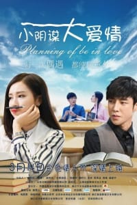 Planning of be in Love | Bmovies