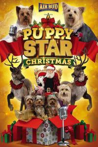 Puppy Star Christmas | Bmovies