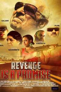 Revenge is a Promise | Bmovies