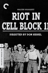 Riot in Cell Block 11 | Bmovies