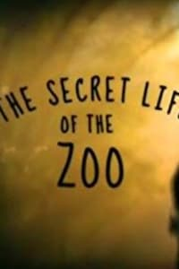 Secret Life of the Zoo - Season 6 | Bmovies