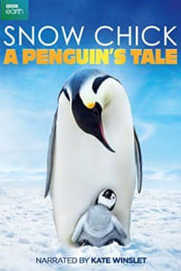 Snow Chick: A Penguin's Tale | Bmovies
