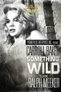 Something Wild | Bmovies