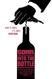 SOMM: Into the Bottle | Bmovies