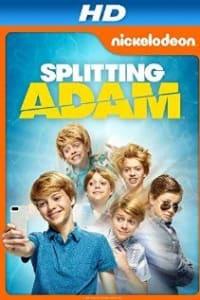Splitting Adam | Bmovies