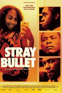 Stray Bullet | Bmovies