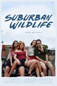 Suburban Wildlife | Bmovies