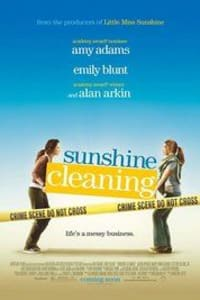 Sunshine Cleaning | Bmovies