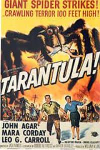 Tarantula   Bmovies