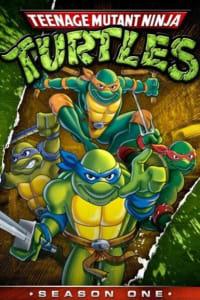 Teenage Mutant Ninja Turtles - Season 6 | Watch Movies Online