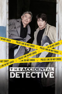 The Accidental Detective | Watch Movies Online