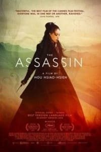 The Assassin | Bmovies