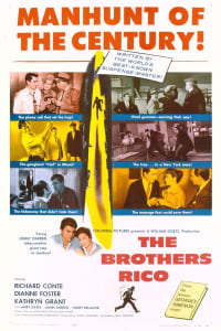 The Brothers Rico   Watch Movies Online