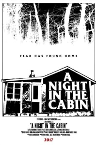 The Cabin   Bmovies