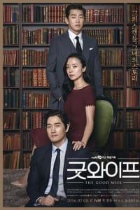 The Good Wife | Bmovies