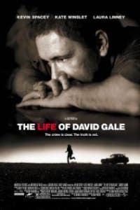 The Life of David Gale | Bmovies