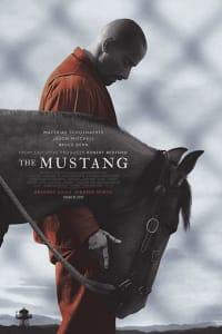 The Mustang | Bmovies