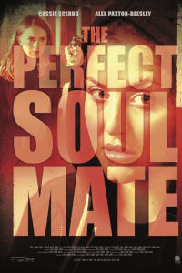 The Perfect Soulmate | Bmovies