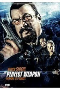 The Perfect Weapon (2016) | Bmovies