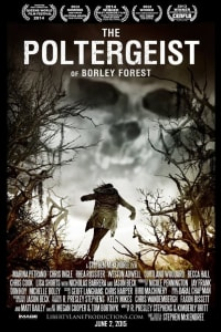 The Poltergeist of Borley Forest   Bmovies