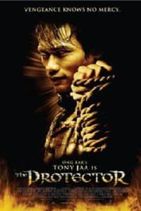 The Protector (2005) | Watch Movies Online