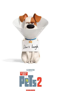 The Secret Life of Pets 2 | Bmovies