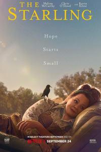 The Starling | Bmovies