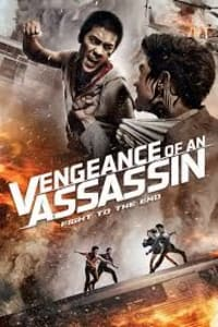 Vengeance Of An Assassin | Bmovies