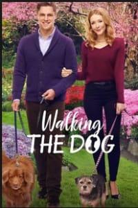Walking the Dog | Bmovies