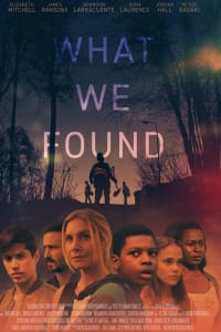 What We Found | Bmovies